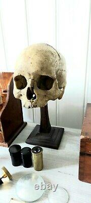 Antique Medical Philip Harris wood stand with human skull microscope Nachet fils