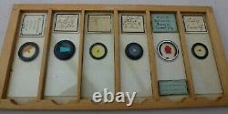 Box Of 34 Antique Microscope Slides In 6 Trays
