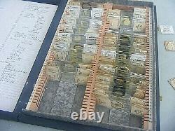 Prepared Microscope Slides Antique / Vintage 2 Cases