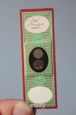 SUPERB CASED SET OF 72 VICTORIAN MICROSCOPE SLIDES Topping, Norman, Wheeler, Bond