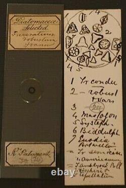 Superb Cased Set Of 34 Antique Selected Diatom Microscope Slides By L. Hardman