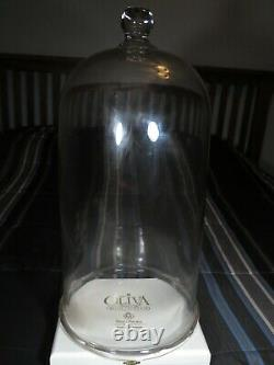 Vintage Glass Cloche Dome Bell Jar Science Apothecary Dome
